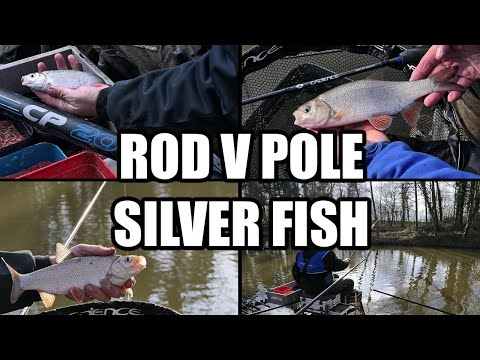 Waggler V Pole For Silver Fish