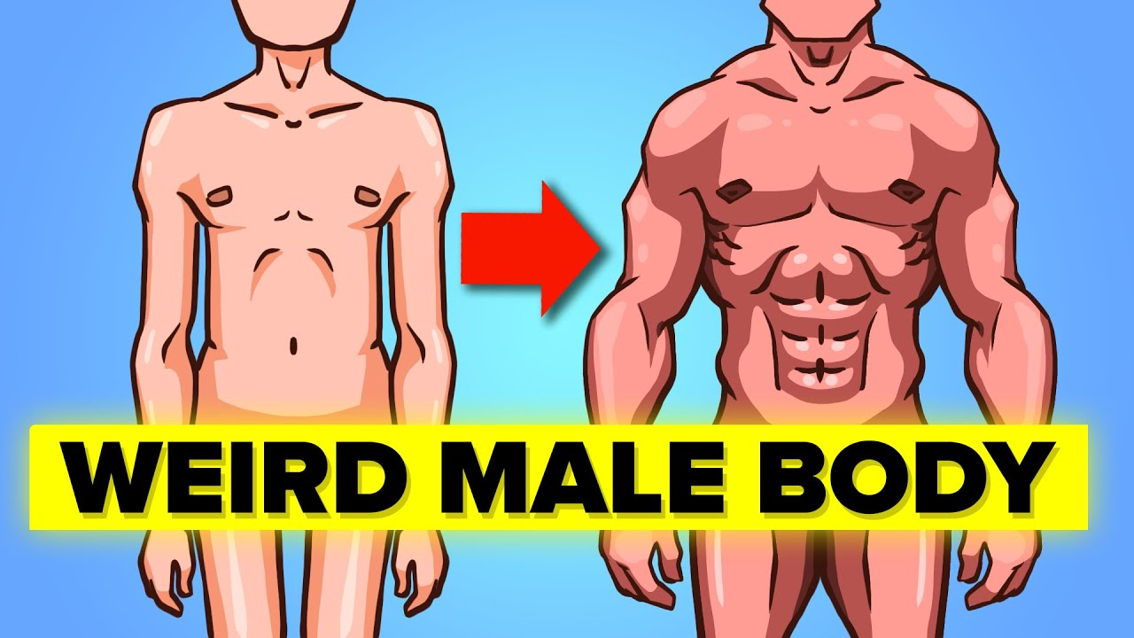 Weird Facts about Male Body