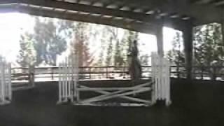 shannon, jumping, madison lloyd rider.wmv
