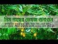 Herbal Quality of Neem Tree (Episode-10)