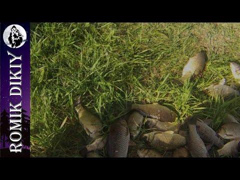 Весенняя рыбалка на карася. (6-7 мая 2017г)