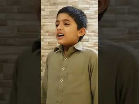 Dil Diyan Gallan Song | Tiger Zinda Hai | Salman Khan | Katrina Kaif | Atif Aslam by Pakistani Child
