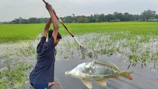 Unbelievable Bamboo Crossbow Fishing Technique By Boat💖Big Fish Catching By Teta🖤Best boat fishing