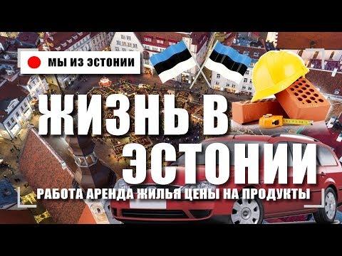 Работа в таллине для русских