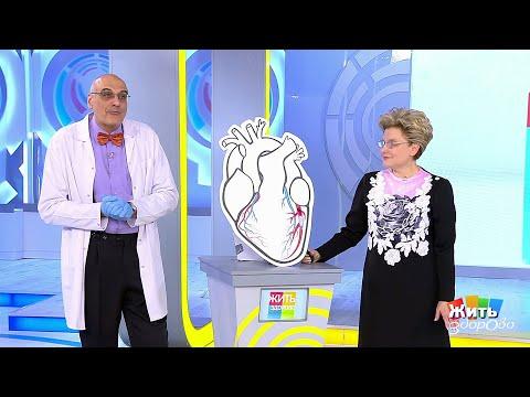 Атеросклероз сердца. Жить здорово!  20.03.2020