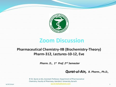 Zoom Discussion Evening Lectures 10 to 11