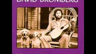 David Bromberg - Chump Man Blues (Live)