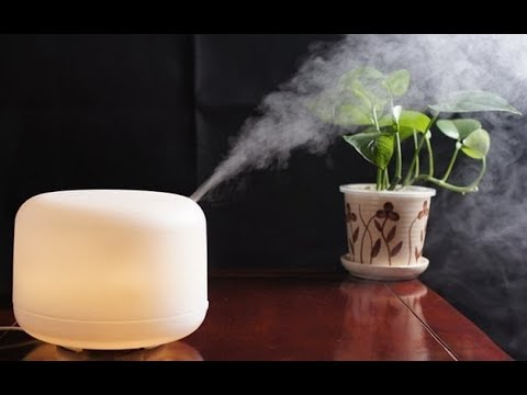 Top 5 Best Humidifiers For Large Rooms