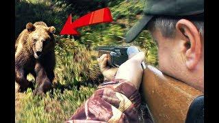 Как и где охотиться на медведя осенью?