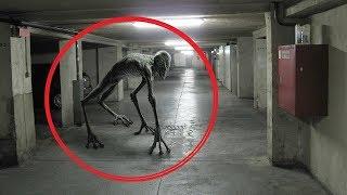 Otherworldly creatures captured on video (sirens, trolls, aliens, ghosts)