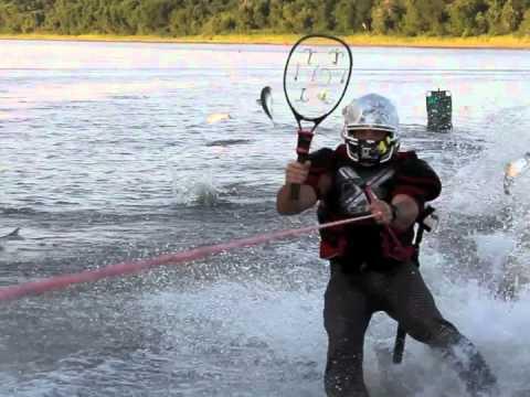 Asian carp bowfishing video