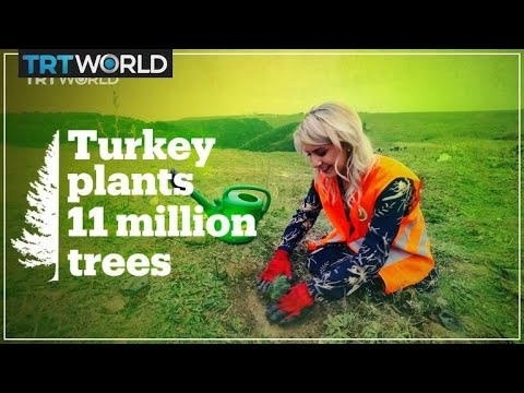 Turkey breaks world