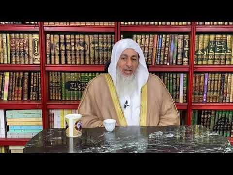 حكم أكل الأخطبوط البحري الشيخ مصطفى العدوي Youtube