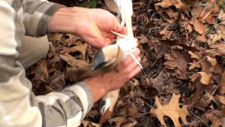 How to Remove Sinew from a Deer