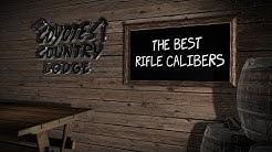 Coyote Hunting Rifle Calibers