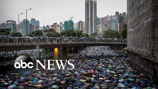 Hong Kong protests, baby rhino, 'Tomatina' : World in Photos, Aug. 19