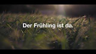 Hauptner - Frühlingserwachen