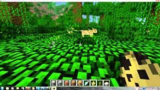 Minecraft Snapshot 12w07b Installation und Was ist Neu[German/Deutsch]HD