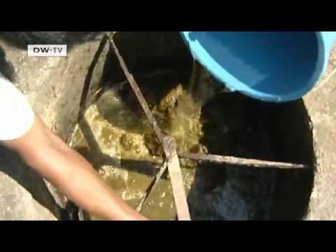 Biogas in Nepal | Global Ideas