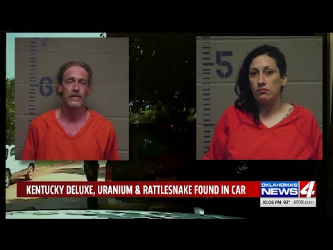 Bill Cunningham - VIDEO: Uranium, Rattlesnake Found In Car During Routine Traffic Stop