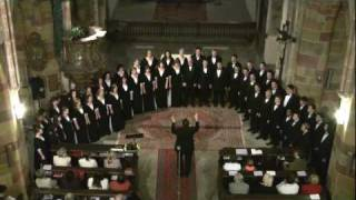 Not One Sparrow is Forgotten - University of Utah Singers