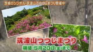 磯山さやかさんが,茨城のシンボル「筑波山」を訪ねます。 筑波山は,「...