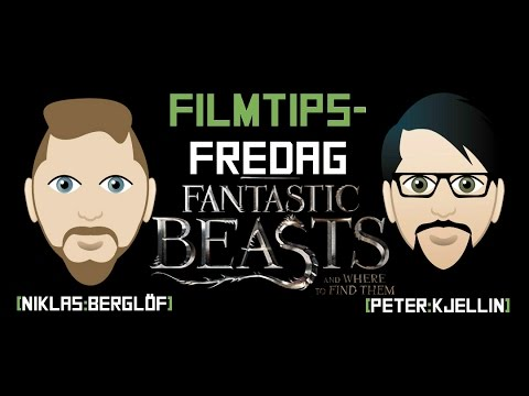 FilmtipsFredag: Fantastic Beasts And Where To Find Them