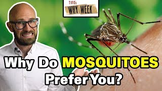 Why Week: Why are Mosquitoes More Attracted to Some People than Others?