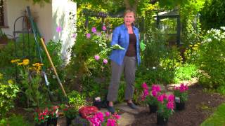 Planting Fall Annuals and Bulbs