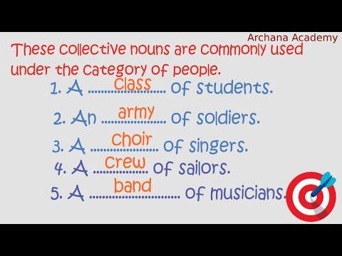 MOST IMPORTANT Collective Noun | Building Concepts Of Noun Part-3
