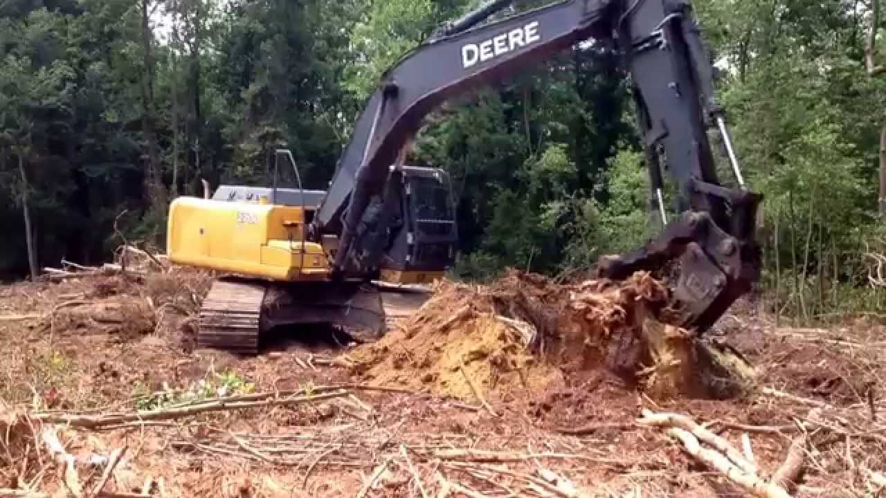 Excavator Digging Pine Stump