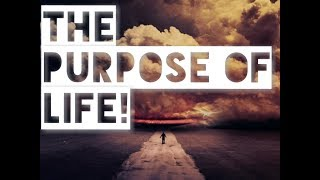 What Is The Purpose Of Life? (This Will Answer So Many Questions!)