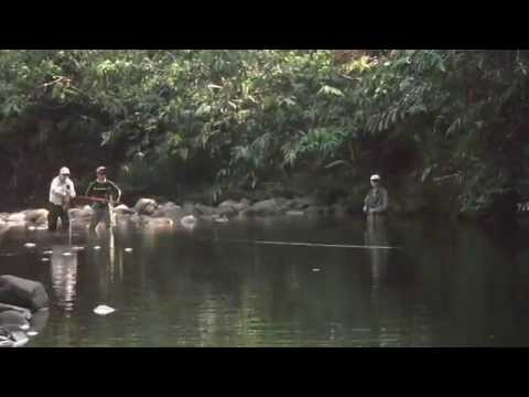 Borneo Fly Fishing Adventure