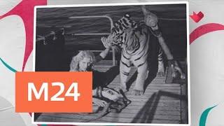 """""""Тайны кино"""": цирк в советском кино - Москва 24"""