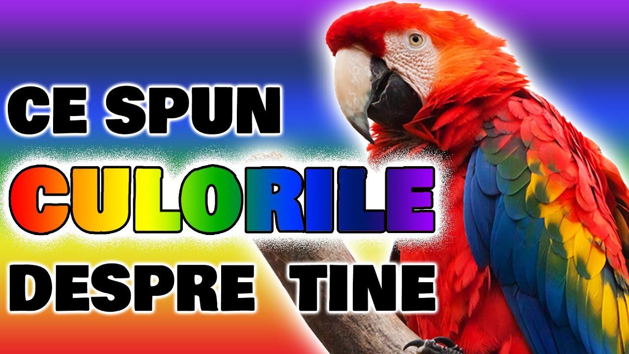 Ce culori obosesc viziunea. 6 sfaturi împotriva ochilor obosiți