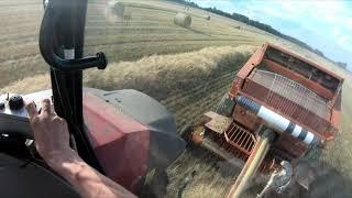 FarmVlog #105------ Żniwa 2019 z NOWY'm Massey Ferguson'em 5710 D4
