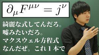 マクスウェル方程式を1本にまとめてみた