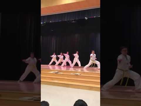 Pickering Valley Elementary School International Night 2017 TaeKwonDo Demo - Eagle TaeKwonDo-6