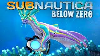 Subnautica Below Zero 02 | Seekobold klaut mir meinen Seaglide | Gameplay thumbnail