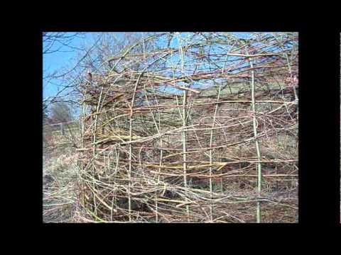 Wir Bauen Ein Weidenhaus - House Of Willow Branches - Uma Casa De Salgueiro