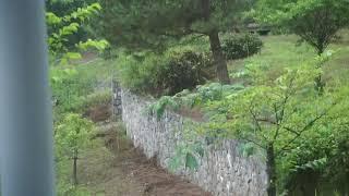 삽티공원과 윤봉길기념체육관