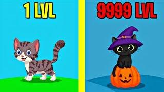 CATS EVOLUTION! MAX LEVEL EVOLUTION IN HELLO CATS! ALL LEVELS HELLO CATS!