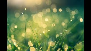relaxing music awakening nature healing