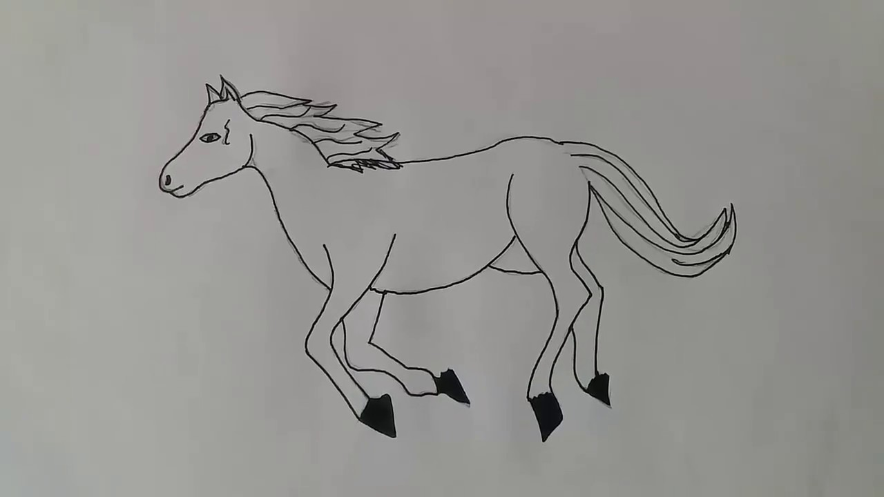 At Nasıl çizilirhow To Draw A Horse Youtube