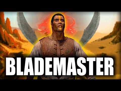Skyrim SE Builds  The Blademaster  Remastered Build