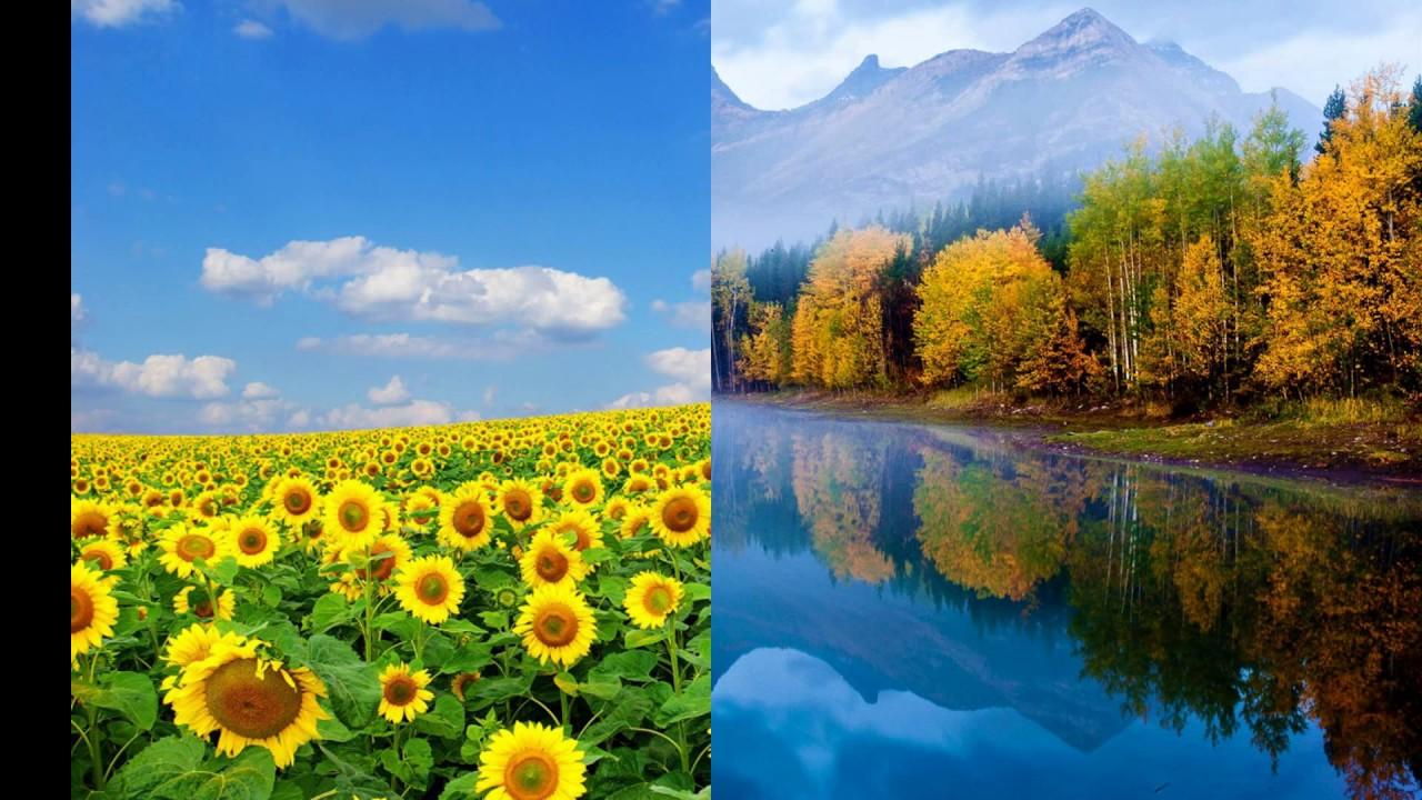Những hình ảnh thiên nhiên đẹp nhất trên thế giới, cảnh đẹp thiên nhiên, phong cảnh thiên nhiên