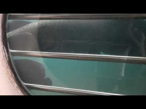 ikan-arapaima-aquarium-purbasari-purbalingga