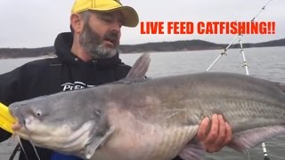 CATFISHING LIVE! Real Time - No Editing!