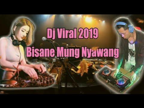 DJ Bisane Mung Nyawang - DJ  Tik Tok Viral 2019