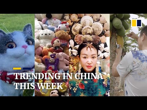 Trending in China:  A 'reunion' with deceased pets, and more